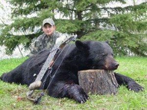 Bear Jeremy